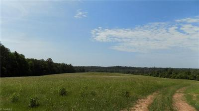 000 GLENCOE CHURCH LOOP, Summerfield, NC 27358 - Photo 2