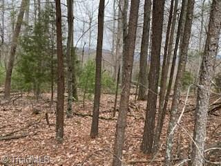131 VIEW POINT DR, Traphill, NC 28685 - Photo 2