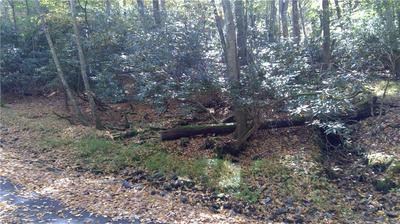 226 INDIAN CAVE WAY, Piney Creek, NC 28663 - Photo 1