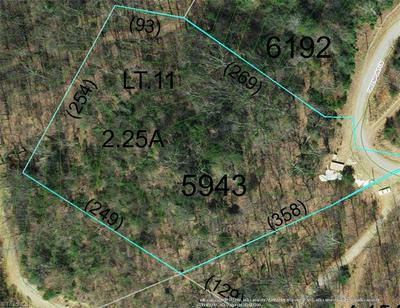 LOT#11 GREEN POINT LANE, Boomer, NC 28606 - Photo 1