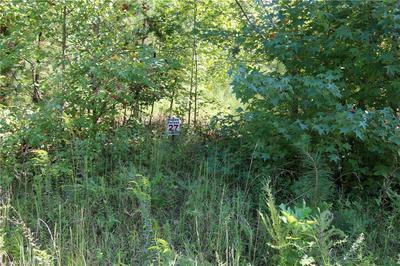 5244 ELLWORTH RIDGE DR, Walkertown, NC 27051 - Photo 2