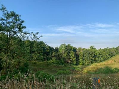 00 NC HIGHWAY 89 W, Westfield, NC 27053 - Photo 1