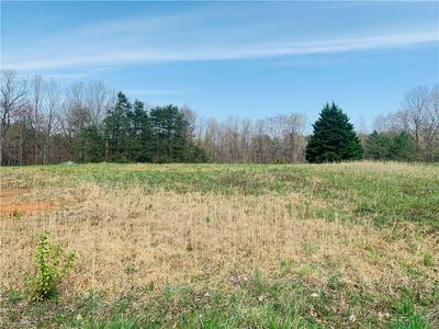 TBD QUAKER MILL DRIVE # LOT # 16, Ararat, NC 27007 - Photo 1
