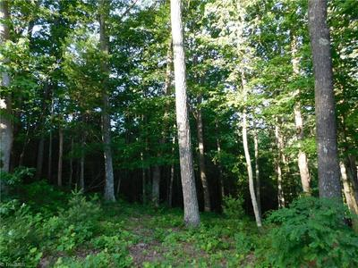 LOT 47 OLDE STONE DRIVE, Crumpler, NC 28617 - Photo 1