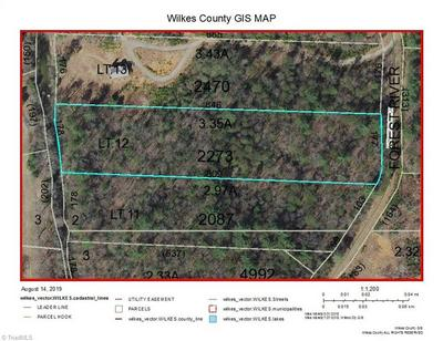 LOT 12 FOREST RIVER LANE, Traphill, NC 28685 - Photo 2