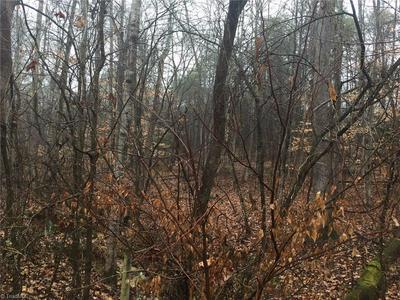 216 PLUM TREE LN, MOCKSVILLE, NC 27028 - Photo 2