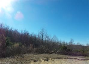 00 CHEEK ROAD, Hamptonville, NC 27020 - Photo 1