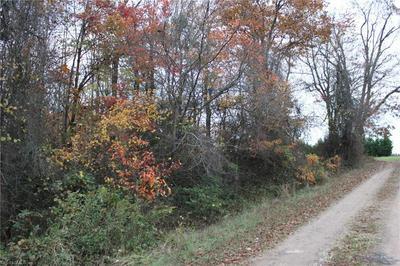 347 MCKINLEY RD, Traphill, NC 28669 - Photo 2