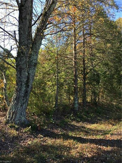 .7 ACRE BALD HILL LOOP, Madison, NC 27025 - Photo 1