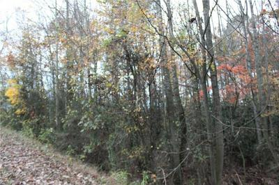 347-2 MCKINLEY ROAD # LOT 2, Traphill, NC 28685 - Photo 1