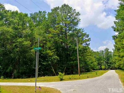 LOT 53 4.97 AC REBEL ROAD, Linden, NC 28356 - Photo 2