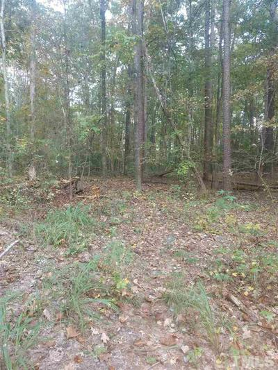 TRACT 3 INDIAN ORCHARD ROAD, Pittsboro, NC 27312 - Photo 2