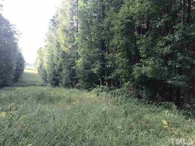 0 SUGG FARM LANE, Raleigh, NC 27603 - Photo 1