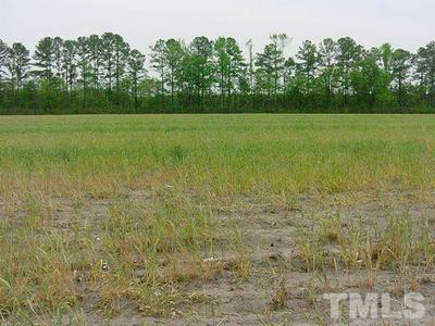 0 INDUSTRIAL DRIVE, Bunnlevel, NC 28323 - Photo 2