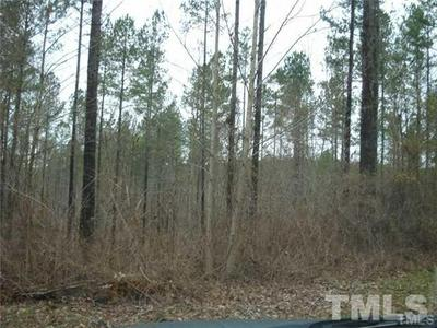 272 MILL STONE RD, Moncure, NC 27559 - Photo 1