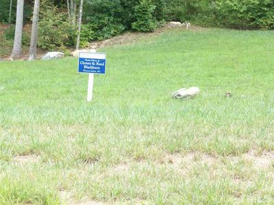 51 MIST WOOD CT, Pittsboro, NC 27312 - Photo 2