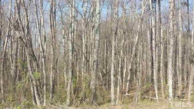 LOT 20 NORTHRIDGE DRIVE, Stem, NC 27581 - Photo 2