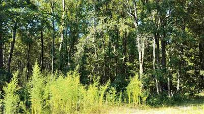 SMALL ROAD, Biscoe, NC 27209 - Photo 1
