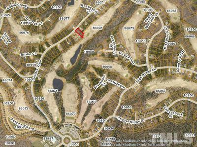 749 GOLFERS VW, Pittsboro, NC 27312 - Photo 1