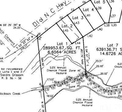 LOT 1 OLD RT 75 HIGHWAY, Oxford, NC 27565 - Photo 2