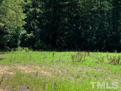 LOT 1 HURDLE MILLS ROAD, Roxboro, NC 27574 - Photo 2