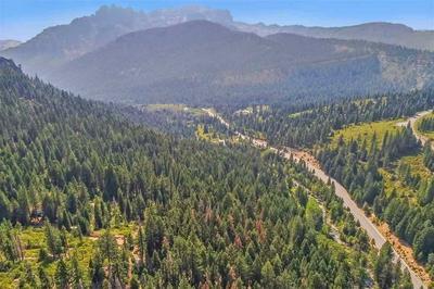 8 OLD CHIMNEY RD, Sierra City, CA 96125 - Photo 1