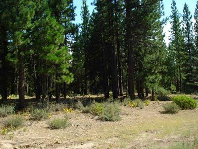 460 MAIN ST, Calpine, CA 96124 - Photo 1