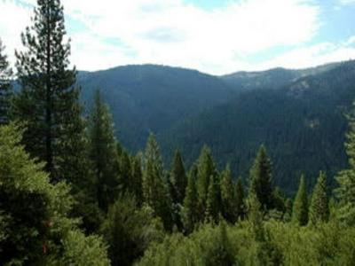 000 NOURSE LANE, Sierra City, CA 96125 - Photo 1