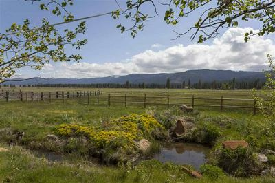 22440 STATE HIGHWAY 89, Calpine, CA 96124 - Photo 1