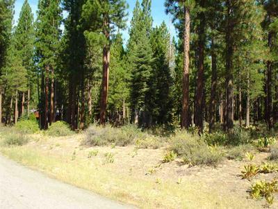 460 MAIN ST, Calpine, CA 96124 - Photo 2