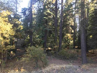 0000 WEST LAKE BOULEVARD, Tahoe City, CA 96145 - Photo 1