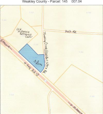 00 HWY 22 NORTH, MCKENZIE, TN 38201 - Photo 2