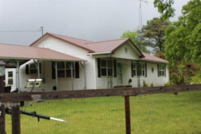 1780 BUTLER SCHOOL RD, BRUCETON, TN 38317 - Photo 2