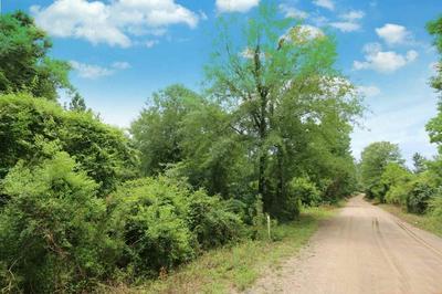 TBD COUNTY ROAD 1052, Wiergate, TX 75977 - Photo 1