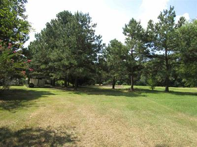 604 COUNTY ROAD 2665, Shelbyville, TX 75973 - Photo 2