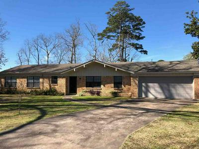 393 COUNTY ROAD 2496, Shelbyville, TX 75973 - Photo 1