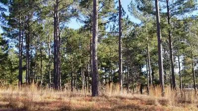 11 COUNTY ROAD 222, Brookeland, TX 75931 - Photo 1