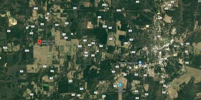 6996 FM 2799, Jasper, TX 75951 - Photo 2