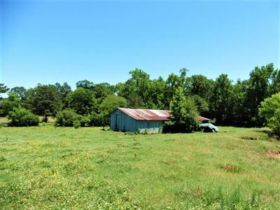 1689 BOYD RD, Bronson, TX 75930 - Photo 2
