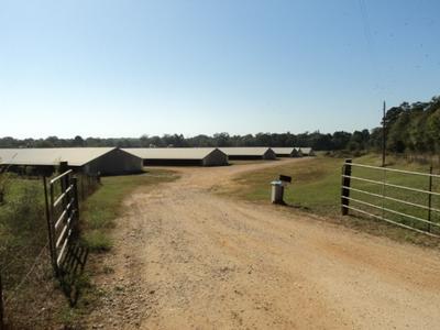 TBD CR 4293, Tenaha, TX 75974 - Photo 2