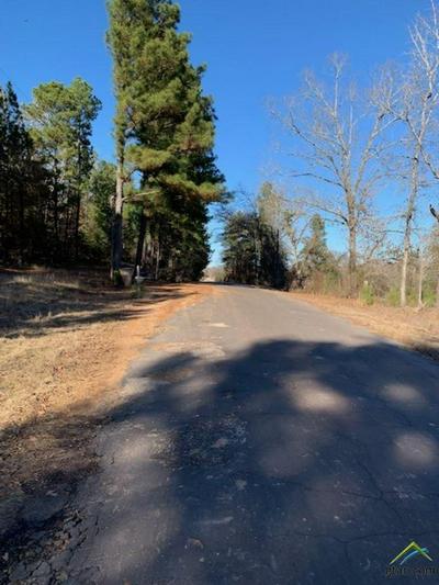 18245 COUNTY ROAD 361, Winona, TX 75792 - Photo 2