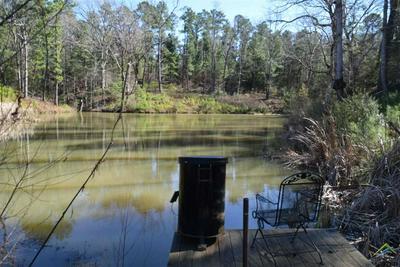 1309 AN COUNTY ROAD 1212, Grapeland, TX 75844 - Photo 2