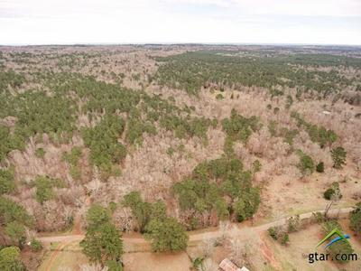TBD COUNTY ROAD 1102A, Rusk, TX 75785 - Photo 2