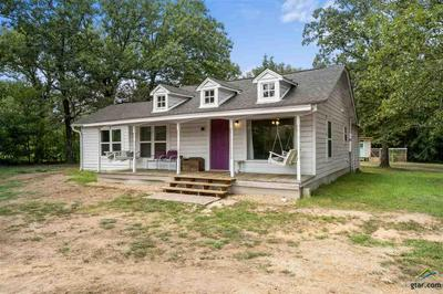 96 COUNTY ROAD 3350, Cookville, TX 75558 - Photo 2