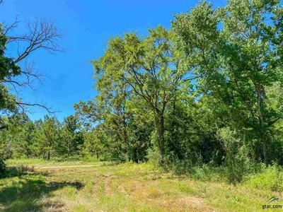HWY 69, Alto, TX 75925 - Photo 2