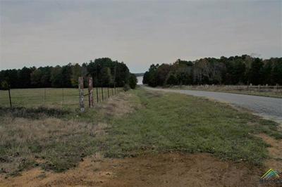17288 COUNTY ROAD 285, ARP, TX 75750 - Photo 1