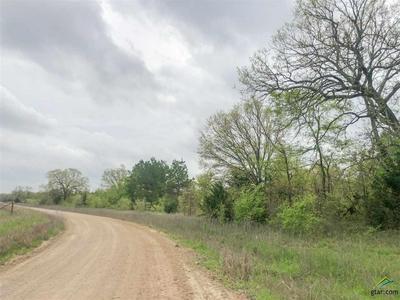 0 CR 4640, Avery, TX 75554 - Photo 1