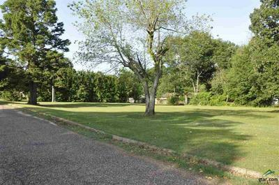 TBD PEACH TREE PARKWAY, Omaha, TX 75571 - Photo 2