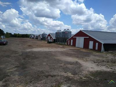 7820 FM 2088, Winnsboro, TX 75494 - Photo 1