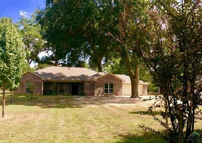 178 CHESTNUT DR, VAN, TX 75790 - Photo 1